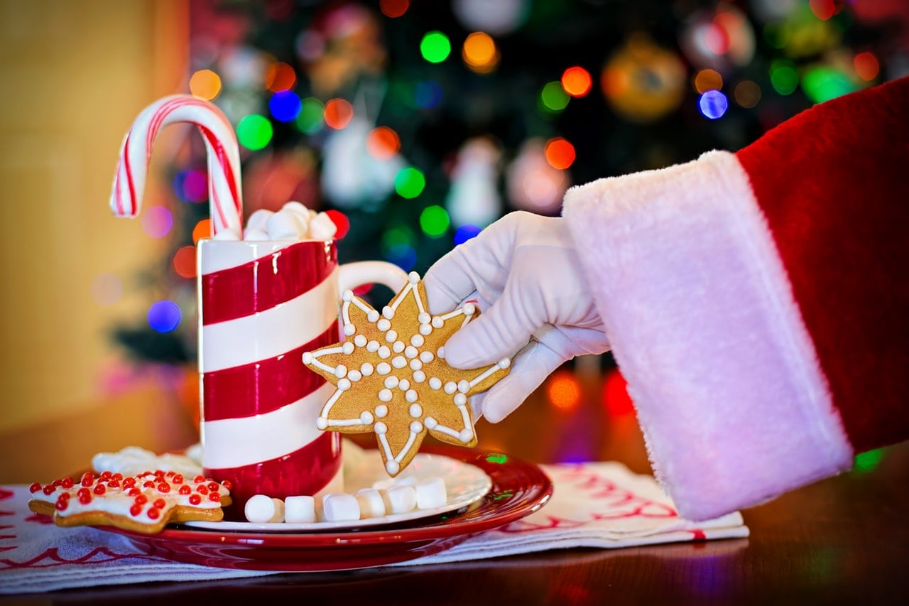 The hand of Santa Claus reaching for a cookie on a red and white plate next to a mug of hot cocoa.